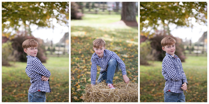 Angela Zuill Photography: October &emdash;